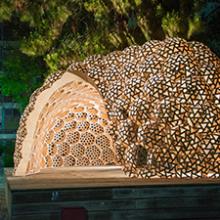Bubble Pavilion, un exemple particulièrement intéressant de la nouvelle architecture du bois