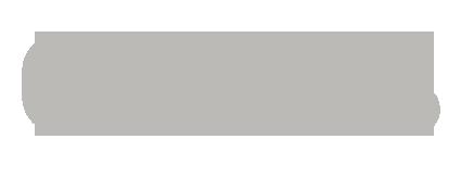 Logo GNOSS